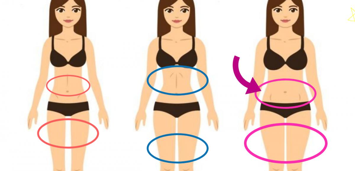 estruturas corporais
