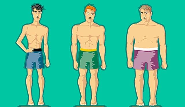 estruturas corporais homens, estruturas corporais