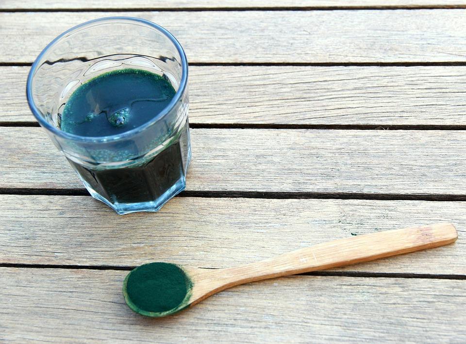 Fontes de Proteína Vegetal - alga