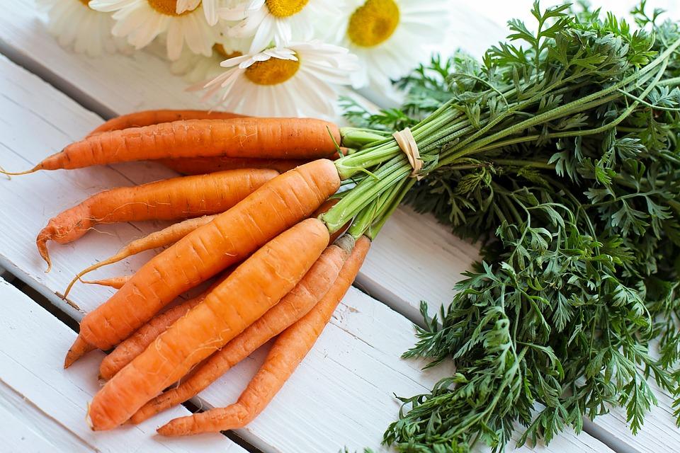 panquecas de cenoura - cenouras