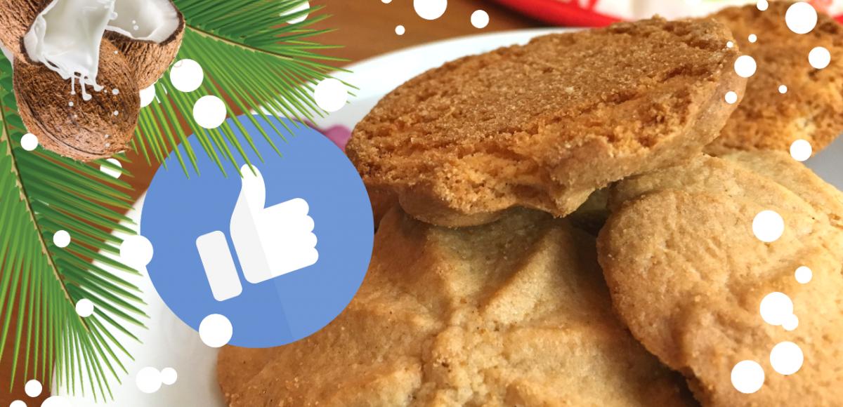 cookies de aveia e coco