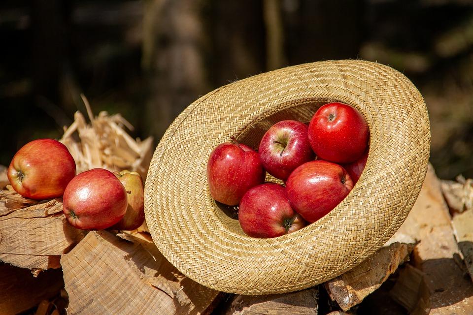 frutas com menos calorias - maçã