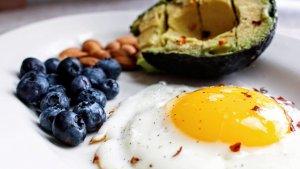 alimentos que mais queimam gordura