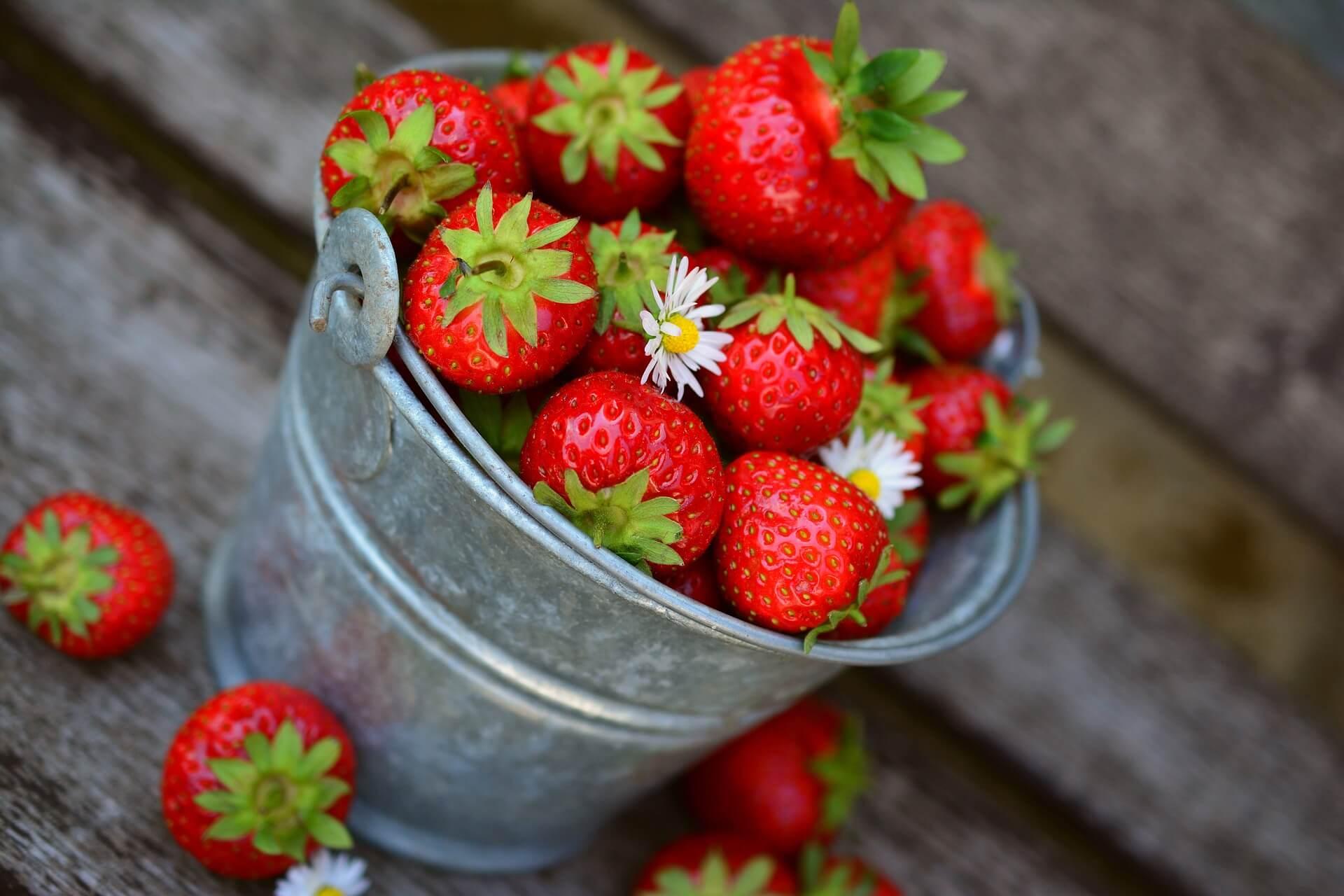 Qual a Melhor Altura do Dia Para Comer Fruta, fruta sem engordar